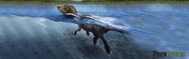 tiranosaurio-nadando