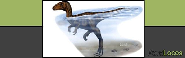 tiranosaurio-nadando-2